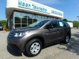 2014 Urban Titanium Metallic Honda CR-V LX AWD #120738598
