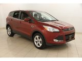 2014 Sunset Ford Escape SE 2.0L EcoBoost 4WD #120749479