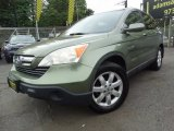 2008 Green Tea Metallic Honda CR-V EX-L 4WD #120916184