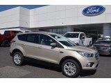 2017 White Gold Ford Escape SE #121245469