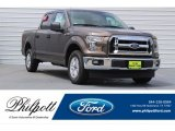 Caribou Ford F150 in 2017