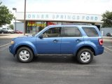 2009 Sport Blue Metallic Ford Escape XLT V6 #12136141