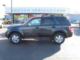 2009 Black Pearl Slate Metallic Ford Escape XLT V6 4WD #12136170