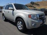 2009 Brilliant Silver Metallic Ford Escape Limited V6 4WD #121824530