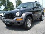 2002 Black Jeep Liberty Sport 4x4 #12137330