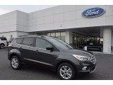 2017 Magnetic Ford Escape SE #121975349