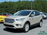 2017 White Gold Ford Escape SE #122023290
