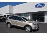 2017 White Gold Ford Escape SE #122290561