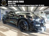 2017 Shadow Black Ford Mustang Shelby GT350 Coupe #122671922