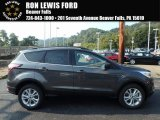2018 Magnetic Ford Escape SEL 4WD #122828829
