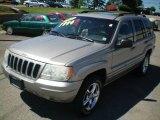 2002 Silverstone Metallic Jeep Grand Cherokee Limited 4x4 #12263701