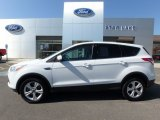 2014 White Platinum Ford Escape SE 2.0L EcoBoost 4WD #122984112