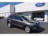 2018 Magnetic Ford Escape SE #123064469