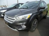 2018 Magnetic Ford Escape SEL #123210498