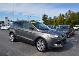 2014 Sterling Gray Ford Escape Titanium 1.6L EcoBoost #123328918