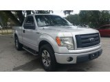 2010 Ingot Silver Metallic Ford F150 STX Regular Cab #123342836