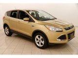 2014 Karat Gold Ford Escape SE 1.6L EcoBoost #123456954