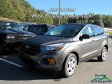 2018 Magnetic Ford Escape S #123489455