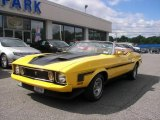 Medium Bright Yellow Ford Mustang in 1973