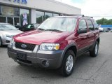 2006 Redfire Metallic Ford Escape XLT V6 4WD #12350007