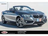 2018 Mineral Grey Metallic BMW 2 Series 230i Convertible #123698904