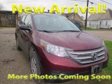 2013 Basque Red Pearl II Honda CR-V LX AWD #123718291
