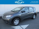 2014 Polished Metal Metallic Honda CR-V LX AWD #123789209