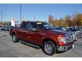 2014 Sunset Ford F150 XLT SuperCrew #123815773