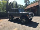 Ford Bronco 1973 Data, Info and Specs