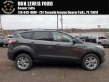 2018 Magnetic Ford Escape SE 4WD #123948090