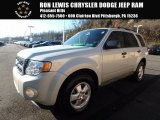 2009 White Suede Ford Escape XLT V6 4WD #124075020