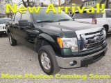 2014 Green Gem Ford F150 XLT SuperCrew 4x4 #124141012