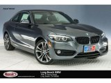2018 Mineral Grey Metallic BMW 2 Series 230i Coupe #124238007