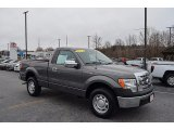 2011 Sterling Grey Metallic Ford F150 XL Regular Cab #124257951