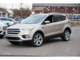 2017 White Gold Ford Escape Titanium 4WD #124350454