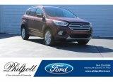 2018 Cinnamon Glaze Ford Escape SEL 4WD #124382421