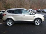 2018 White Gold Ford Escape Titanium 4WD #124477212