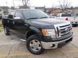 2014 Green Gem Ford F150 XLT SuperCrew 4x4 #124622331