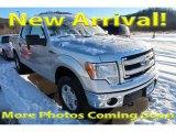 2014 Ingot Silver Ford F150 XLT SuperCrew 4x4 #124699383