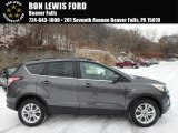 2018 Magnetic Ford Escape SE #124789867