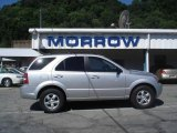 2009 Bright Silver Kia Sorento LX 4x4 #12449069