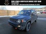 2017 Black Jeep Renegade Trailhawk 4x4 #124790130
