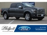 Magnetic Ford F150 in 2017
