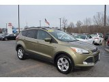 2013 Frosted Glass Metallic Ford Escape SE 1.6L EcoBoost #125001334