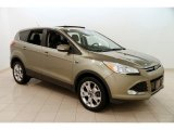 2013 Ginger Ale Metallic Ford Escape SEL 1.6L EcoBoost 4WD #125001592