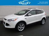 2014 White Platinum Ford Escape Titanium 2.0L EcoBoost 4WD #125289188