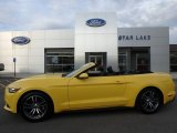 2017 Triple Yellow Ford Mustang EcoBoost Premium Convertible #125564087