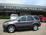 2006 Dark Shadow Grey Metallic Ford Escape XLT V6 4WD #12518509