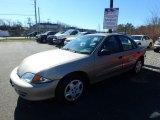 2002 Sandrift Metallic Chevrolet Cavalier LS Sedan #125666543