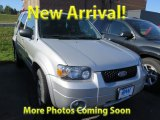 2006 Silver Metallic Ford Escape Limited 4WD #125836025